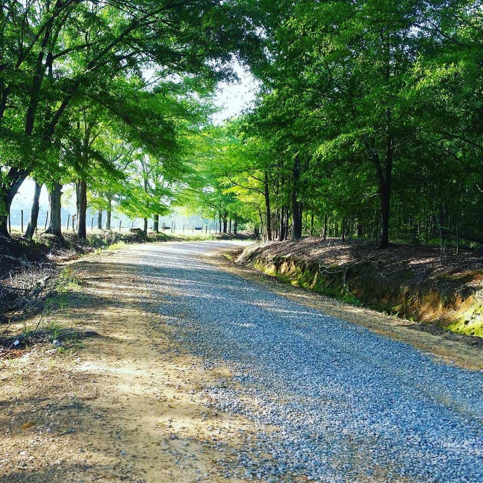 A road in Alabama showing the beauty of this affordable rv winter destination